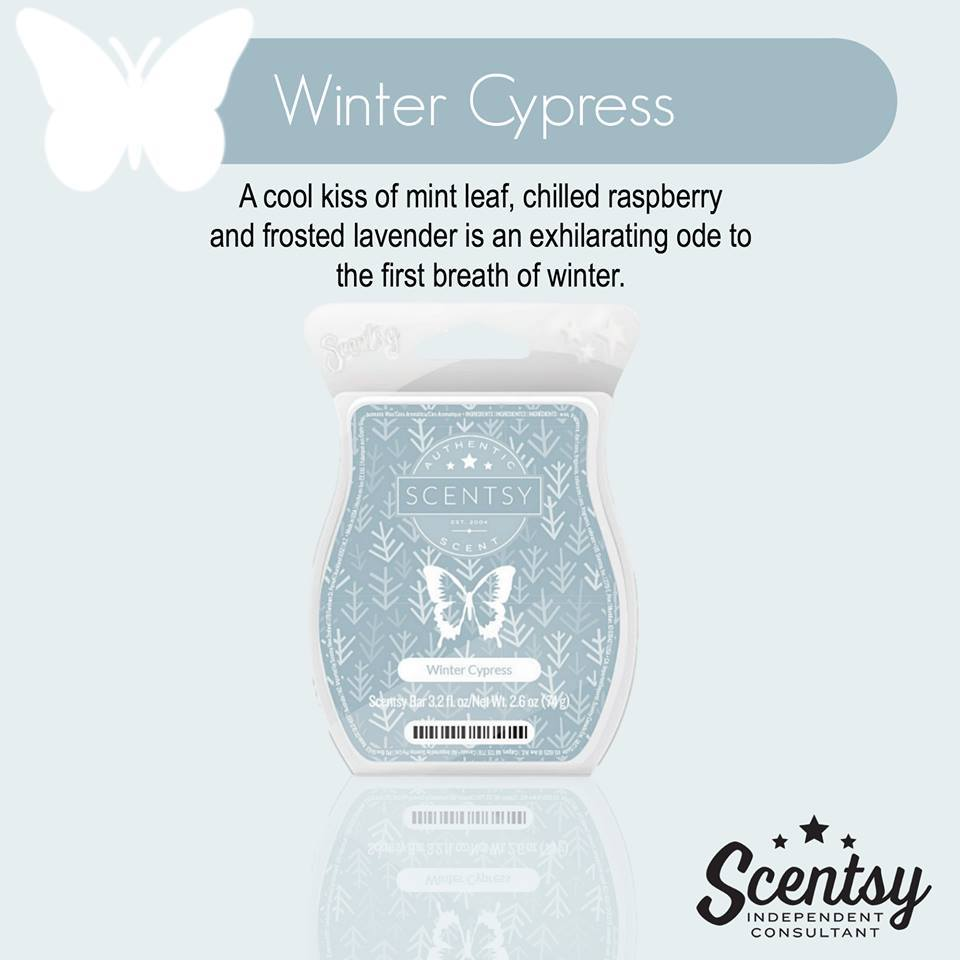 November 2015 Scentsy Scent of the month Winter Cypress