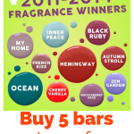 Back for January 2017 – Scentsy's favorite fragrances
