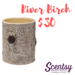 Scentsy Warmers - River Birch - $30