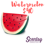 Scentsy Warmers - Watermelon - $40