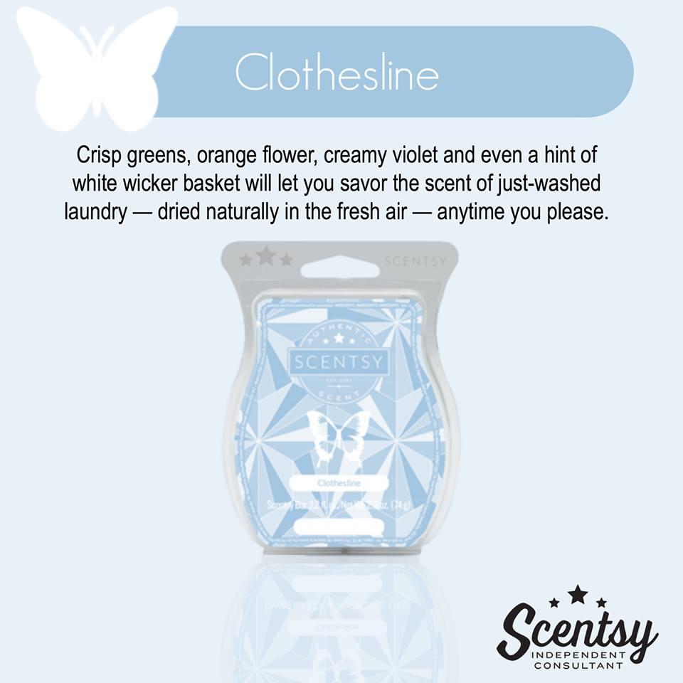 clothesline Scentsy Spring Summer Catalog Melissa Dell