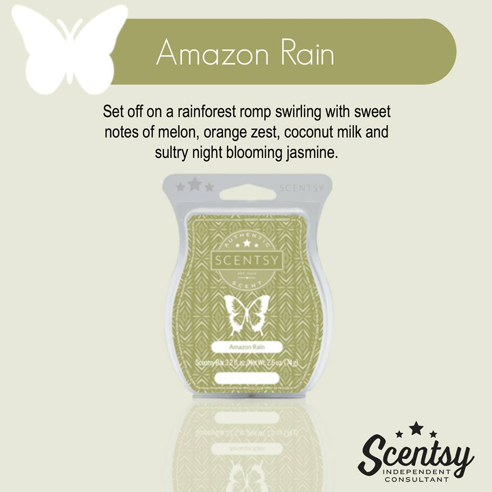 Real Scent Feedback - Amazon Rain Scentsy Spring Summer 2016